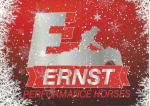 ErnstLogoWeihnachten