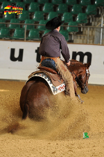 RH Chic Josie On Top, NRHA NRW Futurity in Borken, Res. Champ. 2012